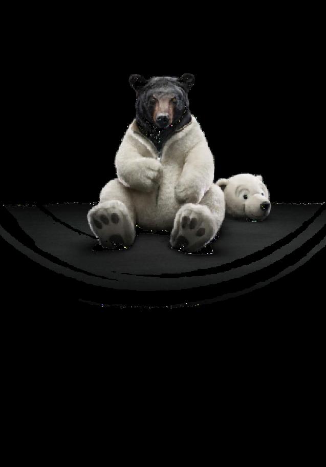 maglietta T-shirt Bear