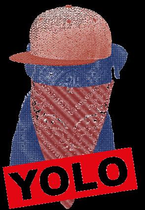 maglietta yolo pug