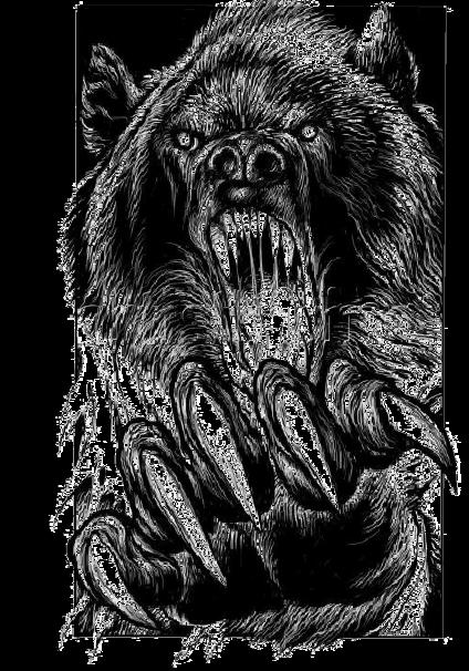 maglietta bear shirt