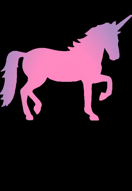 maglietta unicorns