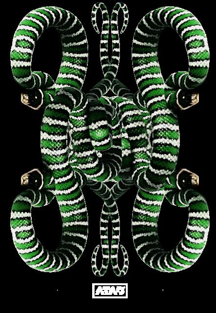 maglietta snake 3
