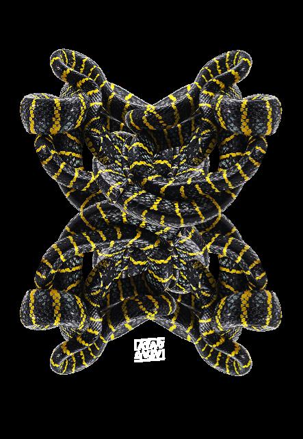 maglietta yellow snake