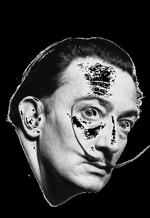 maglietta Salvador Dalì.