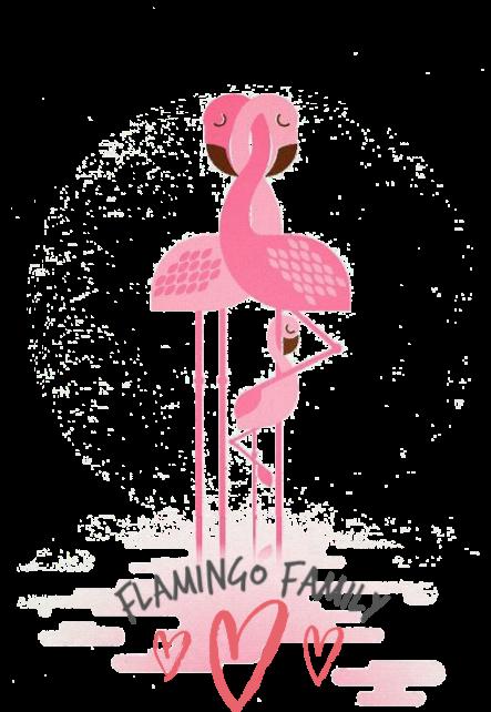 maglietta Flamingo Family