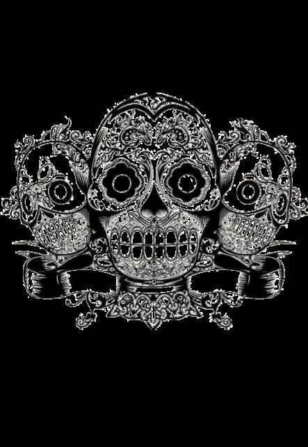 maglietta Skulls