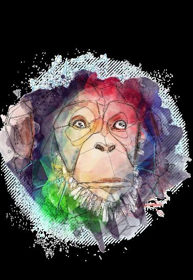 maglietta scimmiabho
