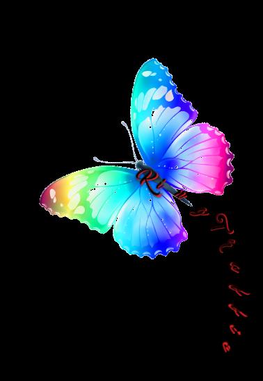maglietta #ButterflyG