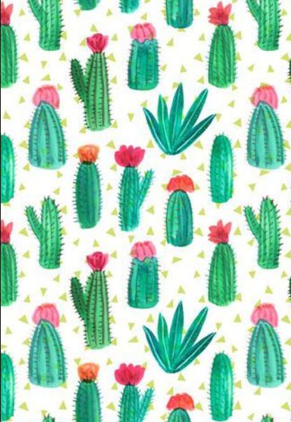 maglietta Confetto cactus