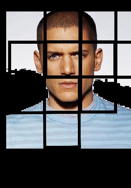 maglietta prison break