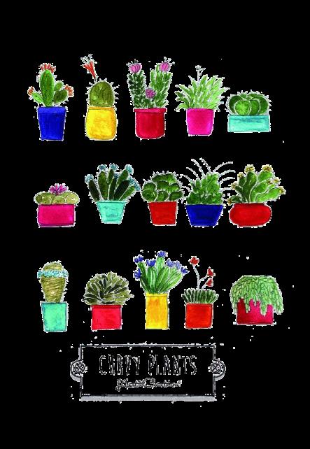 maglietta curvy plants