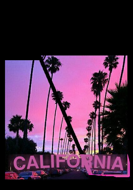 maglietta Pink California