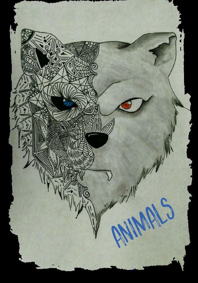 maglietta ANIMALS