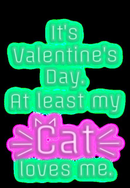 maglietta cat
