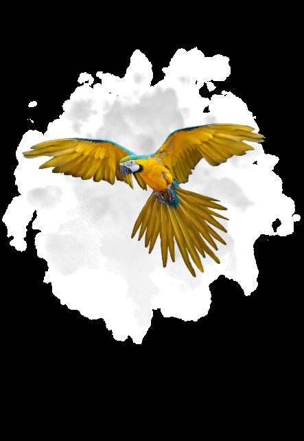 maglietta parrot
