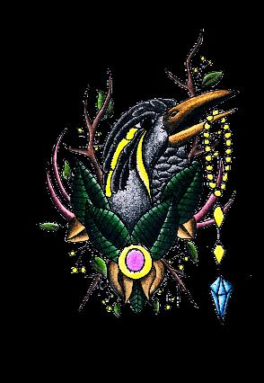 maglietta Raven