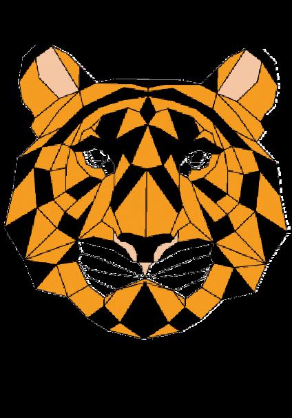 maglietta The Tiger!!