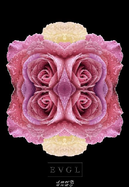 maglietta EVERGLOW®-ROSE