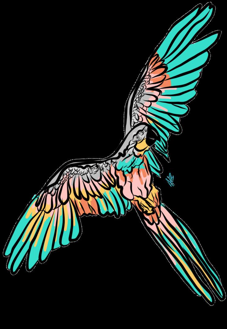 maglietta parrot multicolor