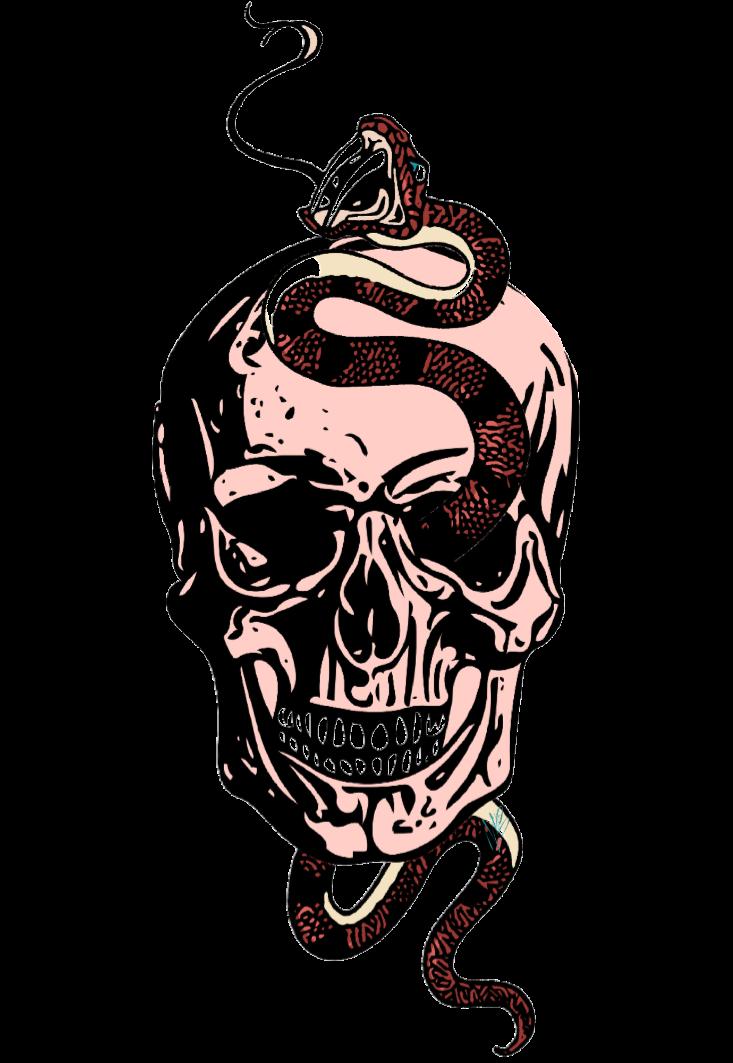 maglietta skull snake