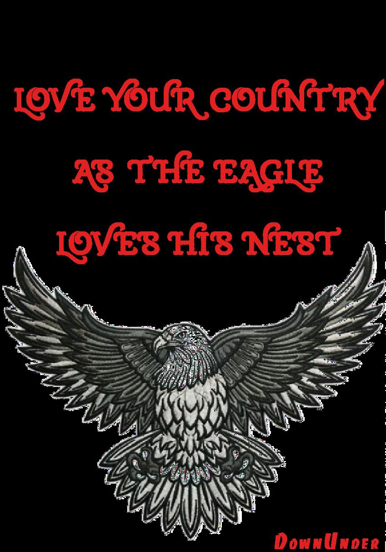 maglietta Ama la patria come l'aquila il proprio nido