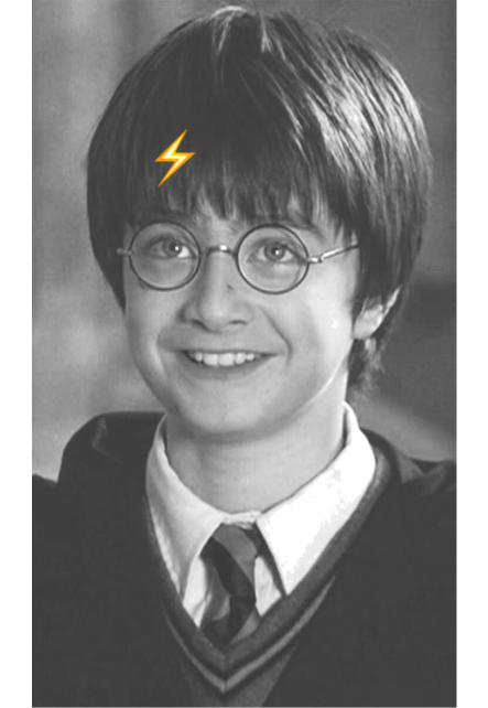 maglietta Harry Potter