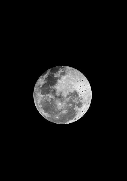 maglietta Full moon
