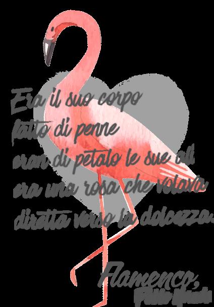 maglietta FLamenco