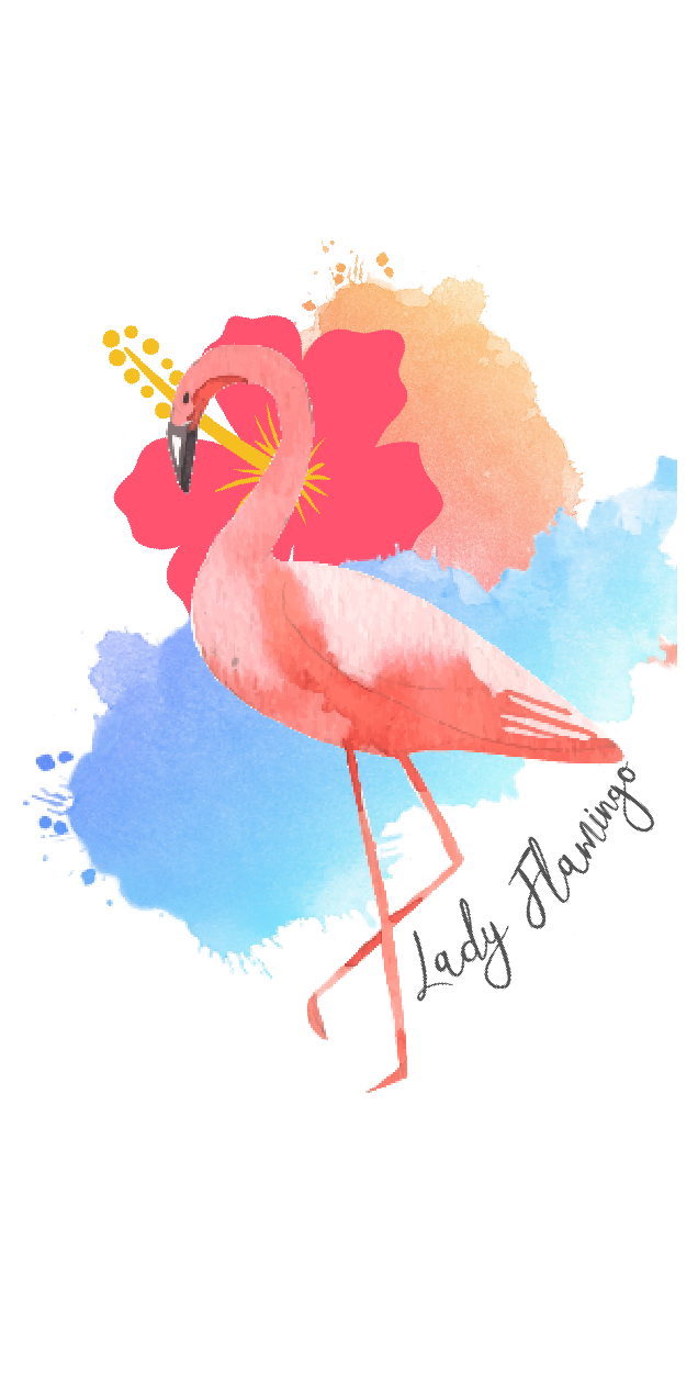 cover Lady flamingo