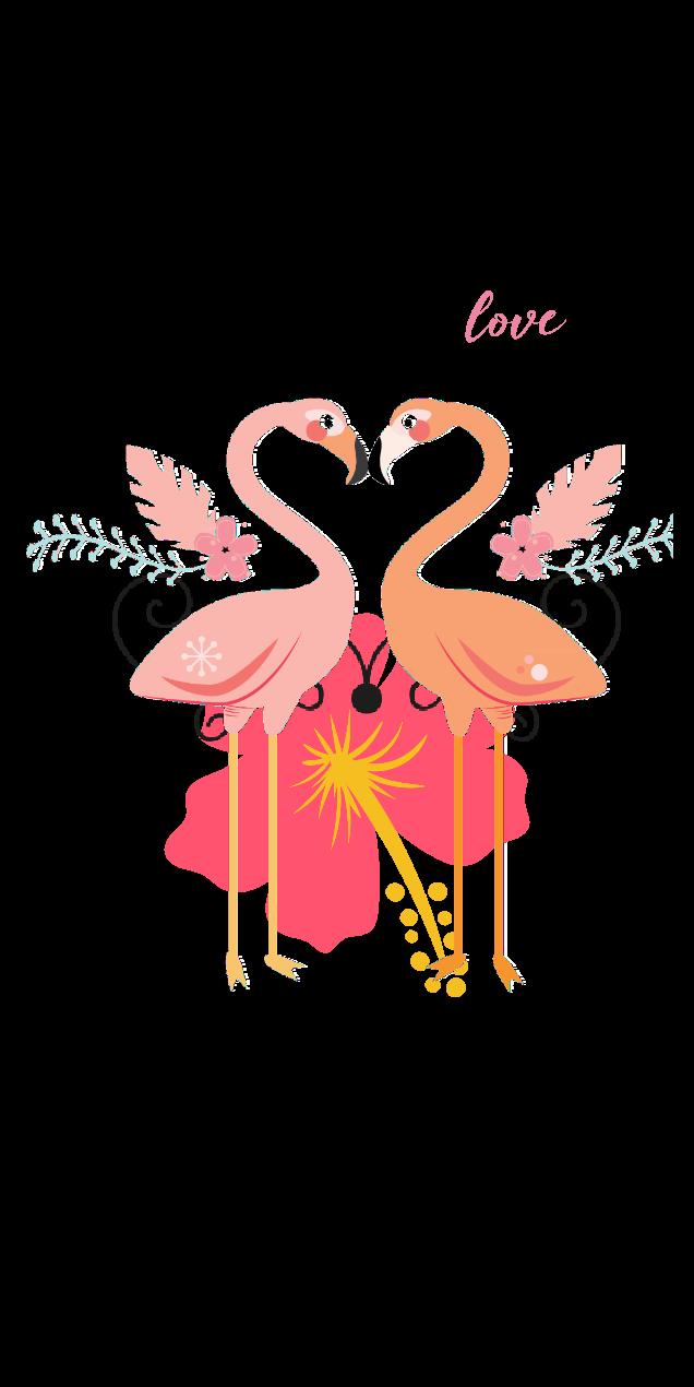 cover love flamingo