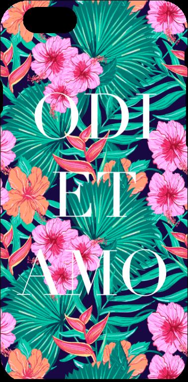 cover OdiEtAmo