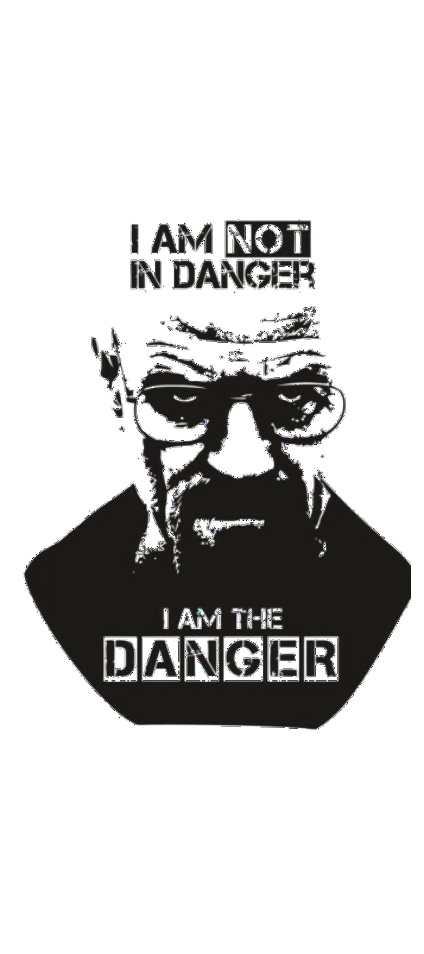 cover I am not in danger, I am the danger.