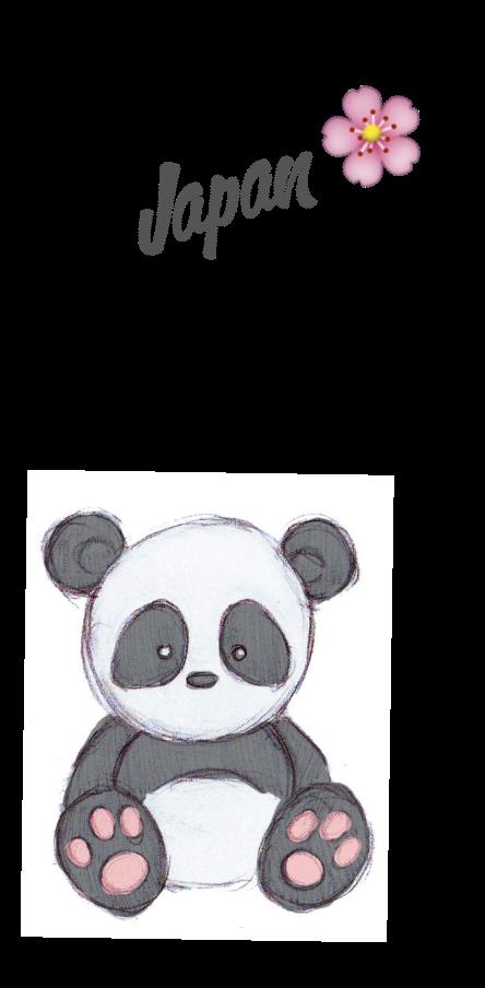 cover Japan Panda