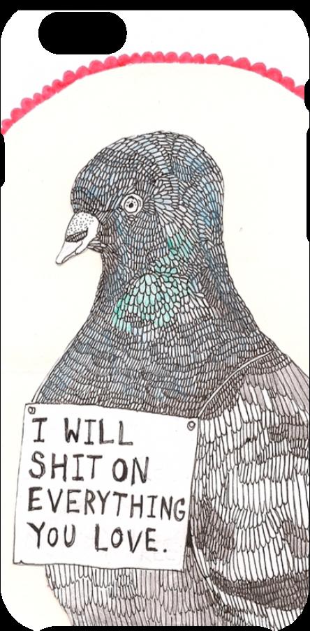 cover vita da piccione