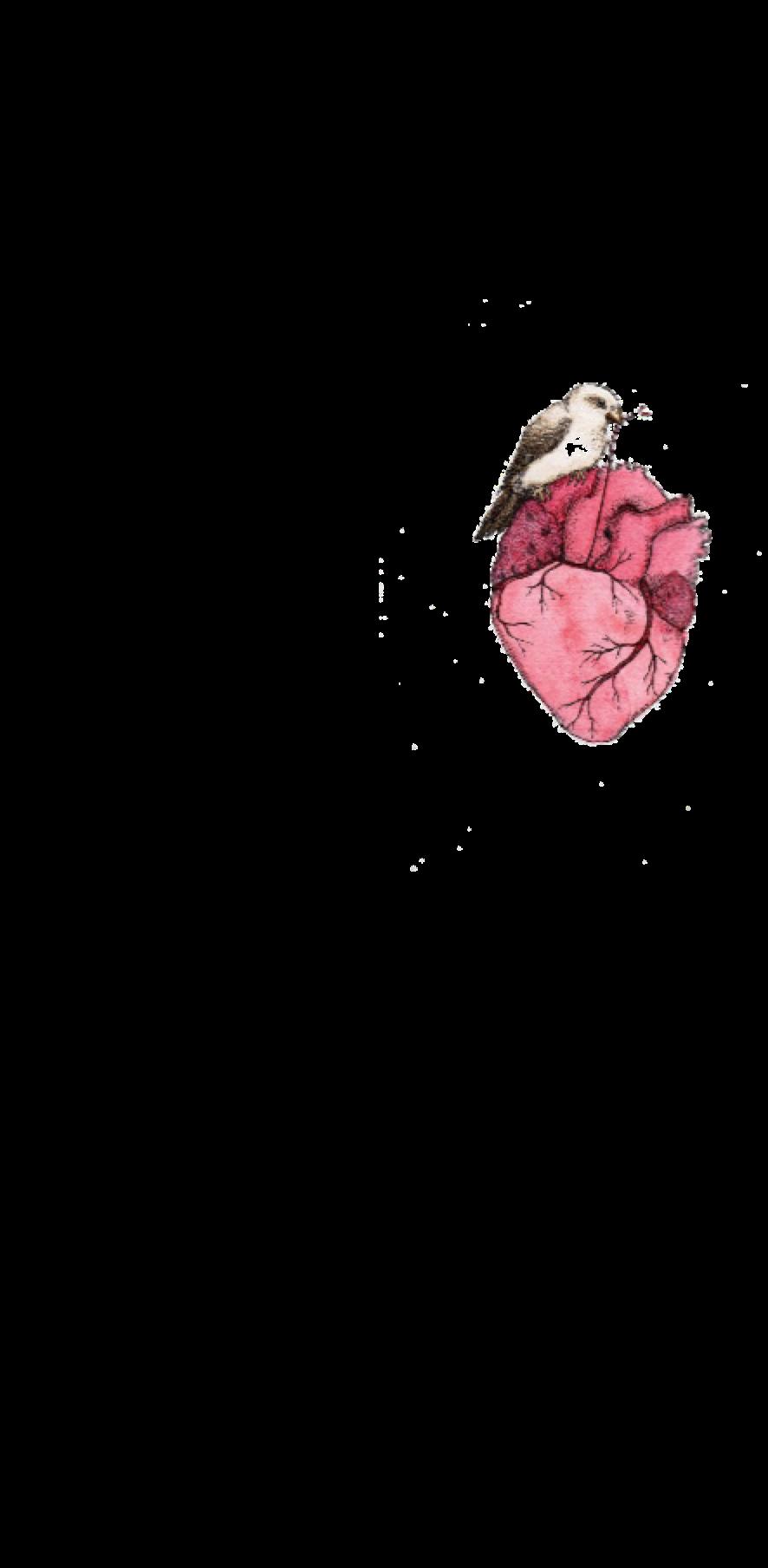 cover heart shirt