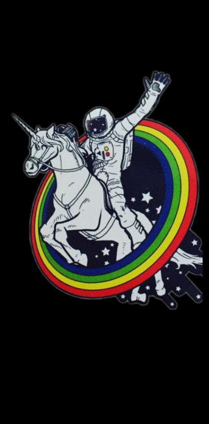 cover Space Unicorn
