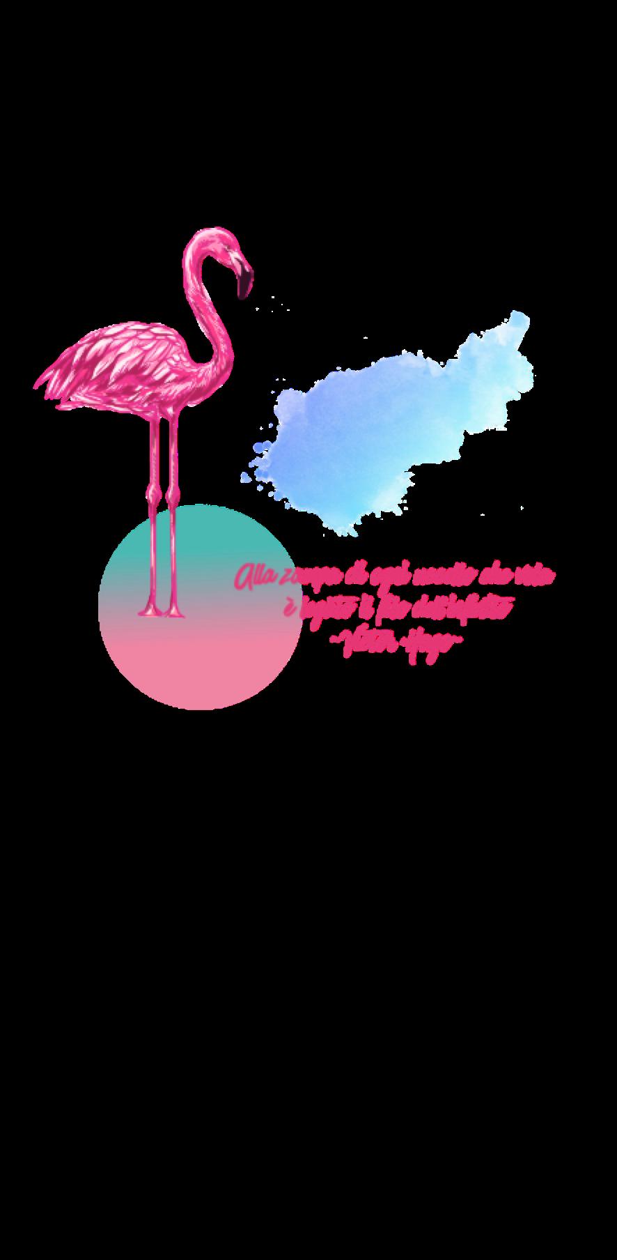 cover fenicottero rosa