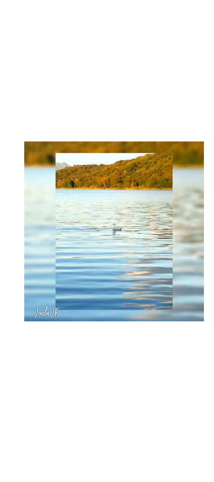 cover Lago