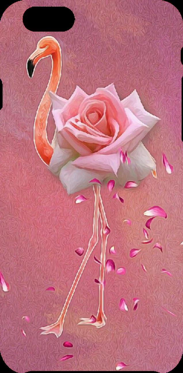 cover Flamingo 'rosa'