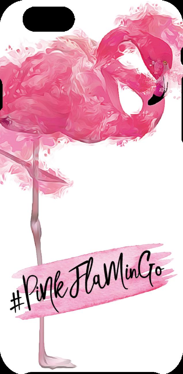 cover PinkFlamingo