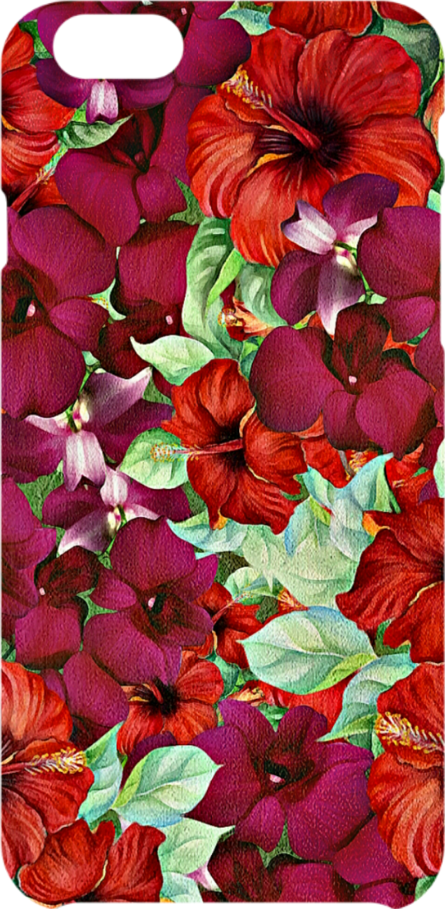 cover Tropical Flowers