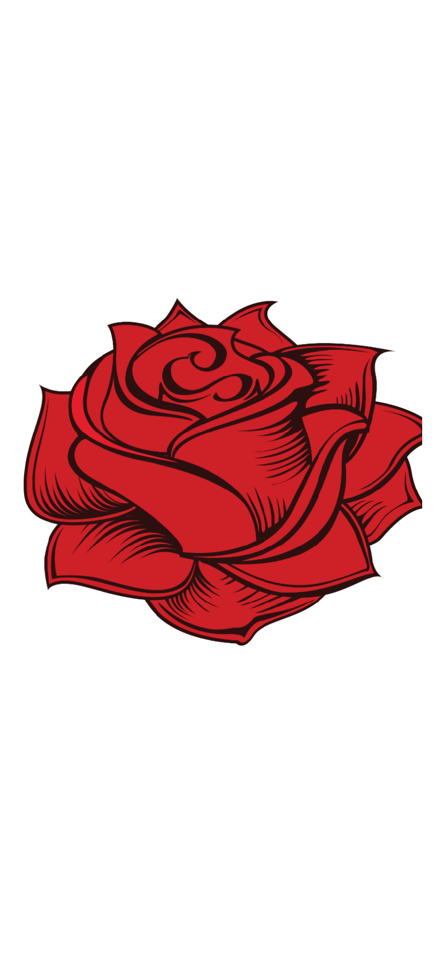 cover Rose