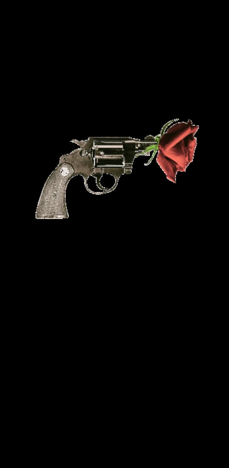 cover Pistol Rose