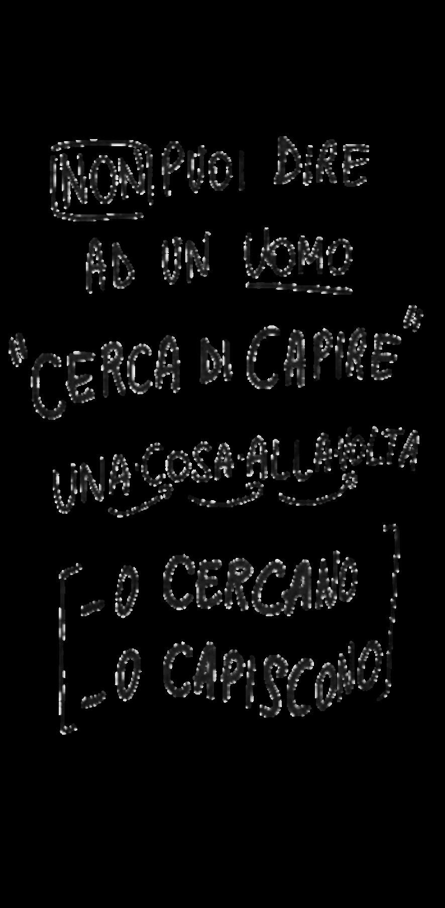 cover CERCAdiCAPIRE