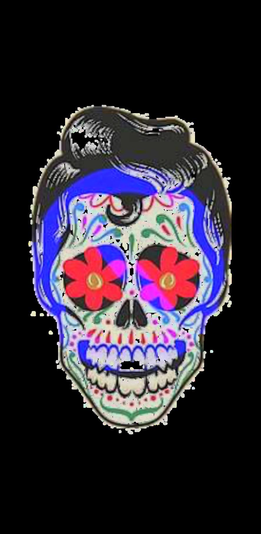 cover Skull