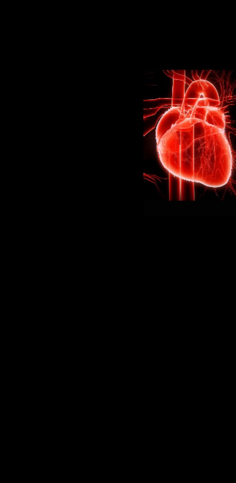 cover T-Shirt HEART OFFICIAL