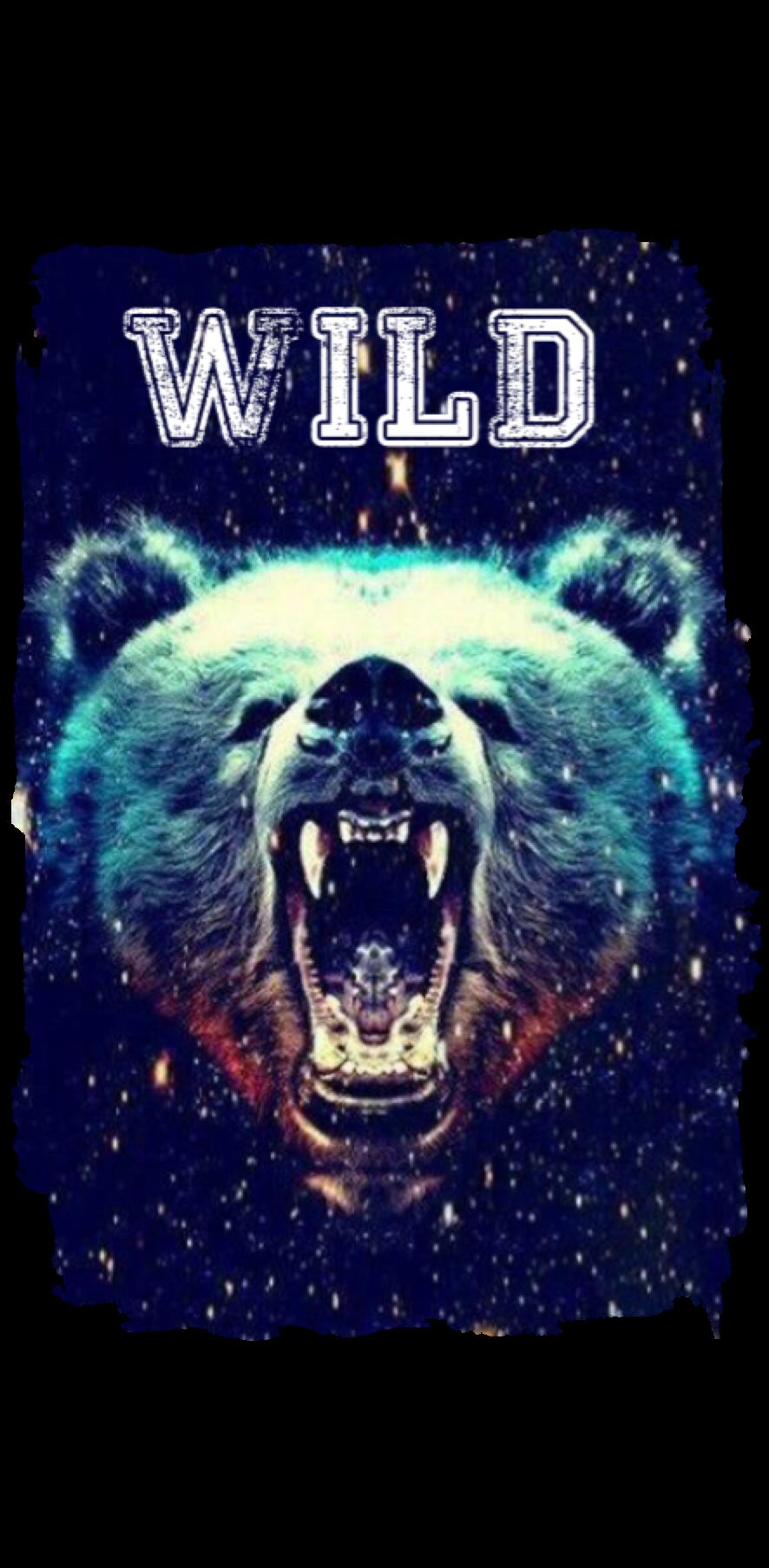 cover BEAR WILD