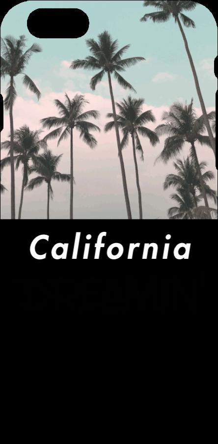 cover California Dreamin'