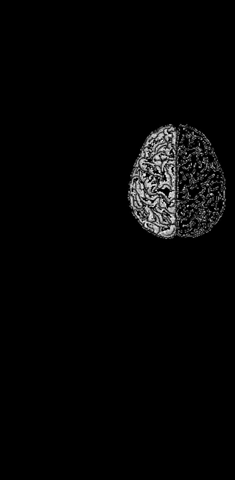 cover Brain