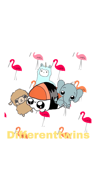 cover differenttwins cover