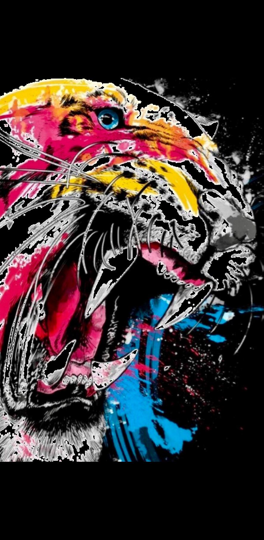 cover Tiger Dan